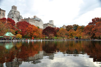 Central Park, Fall Scenery 2011 #877